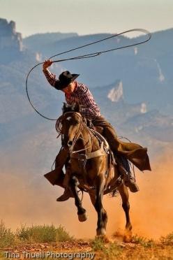cowboy-lasoo